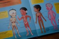 « Et tous pareils ! » : noirs ou blancs, nous avons tous des os et des muscles.